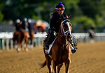 MAY13, 2021: Army Wife gallops in preparation for the Black Eyed Susan Stakes at Pimlico Race Course in Baltimore, Maryland on May 13, 2021. EversEclipse Sportswire/CSM