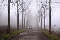 - Luzzara (Reggio Emilia), strada verso il fiume Po<br /> <br /> - Luzzara (Reggio Emilia), way to the Po River