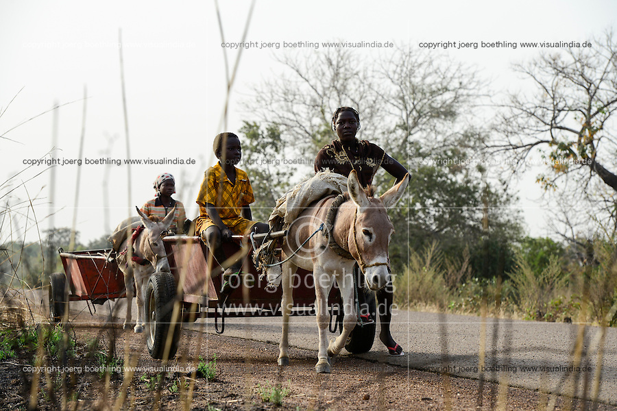 BURKINA FASO , Fada N´Gourma, rural transport with donkey wagon / laendlicher Transport mit Eselskarren