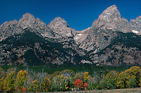 749450411 fall temperatures turn the aspens golden and the deciduous trees bright red along teton road below the grand tetons in grand tetons national park wyoming