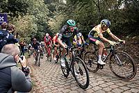 60th De Brabantse Pijl 2020 - La Flèche Brabançonne (1.Pro)<br /> 1 day race from Leuven to Overijse (BEL/197km)<br /> <br /> ©kramon