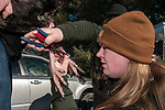 Placing one of two leg bands on a Tom, or male Eastern wild turkey in Hampden, Maine.