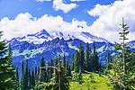 Mount Rainier and meadows around Tipsoo Lake,  Mount Rainier National Park, Washington, USA