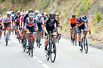 The large breakaway with Michael Storer (AUS) Team DSM during Stage 18 of La Vuelta d'Espana 2021, running 162.6km from Salas to Alto del Gamoniteiru, Spain. 2nd September 2021.   <br /> Picture: Cxcling   Cyclefile<br /> <br /> All photos usage must carry mandatory copyright credit (© Cyclefile   Cxcling)