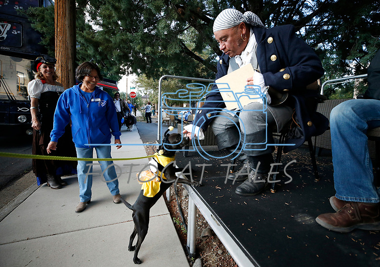 Stitch, 1, plays to the judges during the Scallywaggers Pirate Pup Parade at the Brewery Arts Center, in Carson City, Nev., on Wednesday, Sept. 18, 2019.<br />
