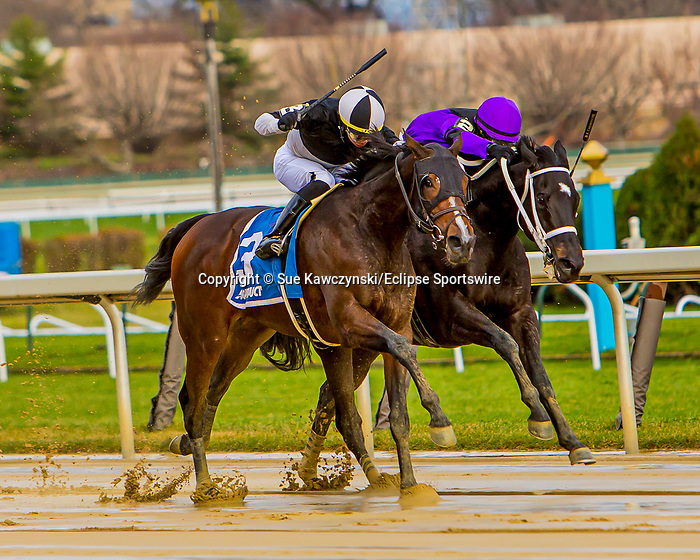 DEC 05, 2020 : NY Bred Sharp Starr with Jose Ortiz aboard, wins the Grade 3 Go for Wand Handicap, for fillies & Mares going one mile. Belmont Park, Elmont, NY.  Sue Kawczynski/Eclipse Sportswire/CSM