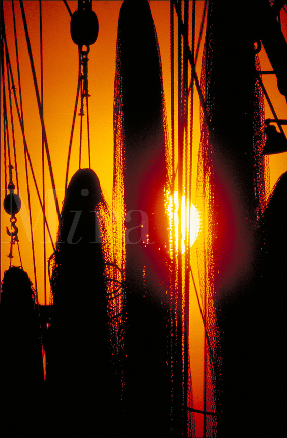 Fishing nets in silhouette with a fiery orange sunset in the background. fish, equipment.  South Carolina, seashore.