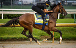 September 2, 2020: Authentic, with Humberto Gomez aboard exercises as horses prepare for the 2020 Kentucky Derby and Kentucky Oaks at Churchill Downs in Louisville, Kentucky. The race is being run without fans due to the coronavirus pandemic that has gripped the world and nation for much of the year. Evers/Eclipse Sportswire/CSM