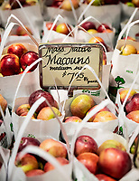 Fresh apples for sale at a farmers market, Massachusetts, USA.