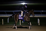 October 30, 2020: Thoughtfully, trained by trainer Steven M. Asmussen, exercises in preparation for the Breeders' Cup Juvenile Fillies at Keeneland Racetrack in Lexington, Kentucky on October 30, 2020. Alex Evers/Eclipse Sportswire/Breeders Cup