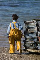 Europe/France/Bretagne/29/Finistère/Lannilis/Prat-Ar-Coum:  Pol-Elias Madec  petit fils d' Yvon Madec , en petit ostréiculteur -Huitres de Prat-Ar-Coum [Non destiné à un usage publicitaire - Not intended for an advertising use]
