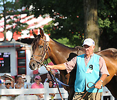 Brass Hat, a durable warrior who race until age 10, was retired on May 24 after 40 lifetime starts, it was announced.