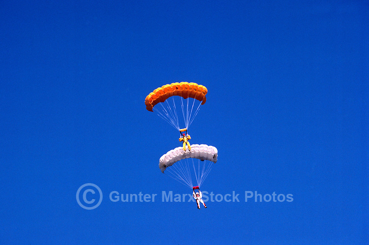 Two Sky Divers / Parachute Jumpers skydiving and jumping in Formation, Lower Fraser Valley, BC, British Columbia, Canada