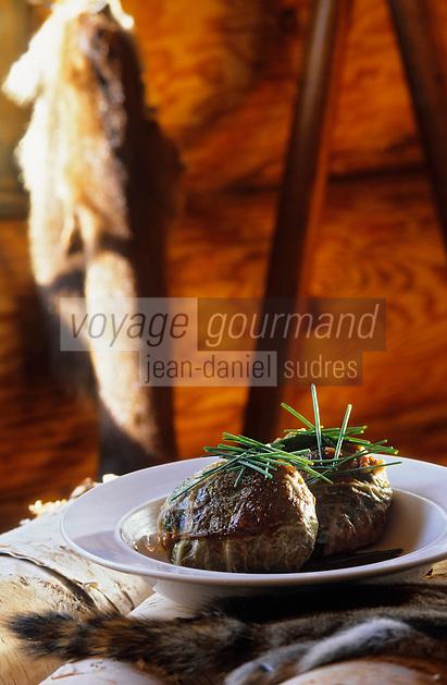 Amérique/Amérique du Nord/Canada/Quebec/Parc régional des Hautes Gorges/Charlevoix : Caillettes de castor à la pourvoirie du lac Moreau