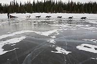 Cracks show in the ice as Jessica Hendricks team runs on Farewell Lake during Iditarod 2008