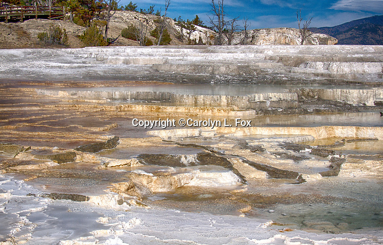 Mammoth Hot Springs is a popular spot in Yellowstone National Park