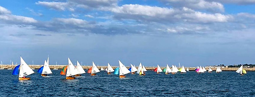The Water Wag fleet blossoming for Bloomsday, June 16th, with 26 boats racing. They should top the 40 turnout in one race for the fist time ever in 2021.