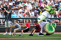 Dayton Dragons mascot Heater helps the boys team in a game of Tug of War between innings of the Midwest League game against the West Michigan Whitecaps at Fifth Third Field on May 29, 2017 in Dayton, Ohio.  The Dragons defeated the Whitecaps 4-2.  (Brian Westerholt/Four Seam Images)