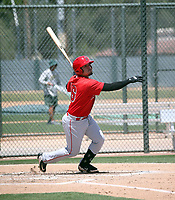 Keinner Pina - Los Angeles Angels 2019 extended spring training (Bill Mitchell)