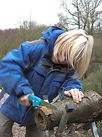 Kind verwendet hohlen Baumstamm, um daraus Scheiben zu sägen. In diese kommt später Fettfutter zum Füttern von Vögeln, Vogelfutter
