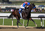 Awesome Baby with Mike Smith aboard wins the Grade II Santa Ynez Stakes at Santa Anita Park in Arcadia, California on January 4, 2014. (Zoe Metz/ Eclipse Sportswire)