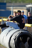 West Virginia Black Bears first baseman Albert Baur (25) goes onto the tarp to catch a foul ball during a game against the Batavia Muckdogs on June 30, 2016 at Dwyer Stadium in Batavia, New York.  Batavia defeated West Virginia 4-3.  (Mike Janes/Four Seam Images)