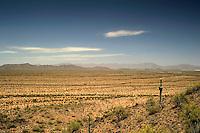 South of Phoenix Arizona.