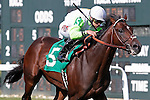 September 20, 2014: Edge of Reality, Irad Ortiz Jr. up, wins the Alphabet Soup Handicap, a mile and 1/16 on the turf for Pennsylvania breds three and upward, on Pennsylvania Derby Day at Parx Racing, Bensalem, PA. Joan Fairman Kanes/ESW/CSM