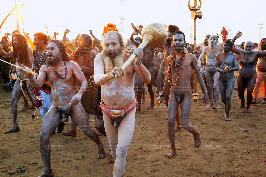 """India. Uttar Pradesh state. Allahabad. Maha Kumbh Mela. Royal bath on Mauni Amavasya Snan (Dark moon). The ritual """"Royal Bath"""" is timed to match an auspicious planetary alignment, when believers say spiritual energy flows to earth. Naga (naked) Sadhus celebrate their joy after taking a dip in Sangam and worship the river Ganges. The Naga Sadhus have their bodies smeared with ashes. They were once warriors, that's why they still carry weapons, such as Gada, Trishula with Dumroo and Swords. A gada is an Indian legendary martial art weapon that uses a heavy head on the end of a handle to deliver powerful blows. It typically consists of a single strong, heavy metal shaft featuring a ball-shaped head made of metal. The head is used to strike the opponent by holding the shaft. The gada is the main weapon of the Hindu God Hanuman, an avatar (incarnation) of Shiva. A trishula is a type of Indian trident, commonly used as a Hindu religious symbol. The word means """"three spear"""" in Sanskrit. In India, the term often refers to a short-handled weapon which may be mounted on a danda or staff. The trishula is wielded by the Hindu God Shiva. Dumroo is probably the oldest and traditional form of percussion instrument in India. It is most commonly known for its association with Lord Shiva. The sword is the weapon of Kali who is the Hindu goddess associated with empowerment. The Kumbh Mela, believed to be the largest religious gathering is held every 12 years on the banks of the 'Sangam'- the confluence of the holy rivers Ganga, Yamuna and the mythical Saraswati. 10.02.13 © 2013 Didier Ruef"""