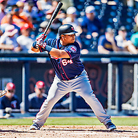 2 March 2019: Minnesota Twins infielder Willians Astudillo at bat during a Spring Training game against the Washington Nationals at the Ballpark of the Palm Beaches in West Palm Beach, Florida. The Twins fell to the Nationals 10-6 in Grapefruit League play. Mandatory Credit: Ed Wolfstein Photo *** RAW (NEF) Image File Available ***