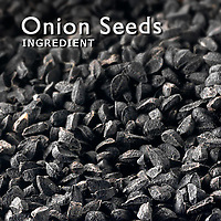 Onion Seed Pictures | Onion Seed Photos Images & Fotos
