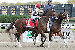 11 06 2010: Heavily favored To Honor and Serve with Jose Lezcano up win  the 35th running of the Grade II Nashua Stakes for 2-year olds, at 1 mile, Aqueduct Racetrack, Jamaica, NY. Trainer William Mott. Owners Live Oak Plantation.