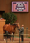 11  November  2009 Keeneland November Sale.   Hip #413 Cotton Blossom, consigned by Eaton Sales, part of the Overbrook Farm dispersal.  Cotton Blossom became the second highest priced horse of the Keeneland November sale in the second session, selling for $2,300,000.