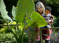 Joanne Perea of Ozark holds her grandson, Jordan Perea, 2, of Fayetteville Thursday, June 10, 2021, as they check out plants in the gardens on the Fayetteville downtown square together. Jordan enjoys gardening with his grandmother so much, she decided to see if he would enjoy seeing the variety of plants on the square before getting a snack. Visit nwaonline.com/210611Daily/ for today's photo gallery.<br /> (NWA Democrat-Gazette/Andy Shupe)
