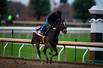 October 30, 2020: Dayoutoftheoffice, trained by trainer Timothy E. Hamm, exercises in preparation for the Breeders' Cup Juvenile Fillies at Keeneland Racetrack in Lexington, Kentucky on October 30, 2020. Alex Evers/Eclipse Sportswire/Breeders Cup