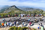 The peloton on the final climb during Stage 14 of La Vuelta d'Espana 2021, running 165.7km from Don Benito to Pico Villuercas, Spain. 28th August 2021.     <br /> Picture: Cxcling   Cyclefile<br /> <br /> All photos usage must carry mandatory copyright credit (© Cyclefile   Cxcling)