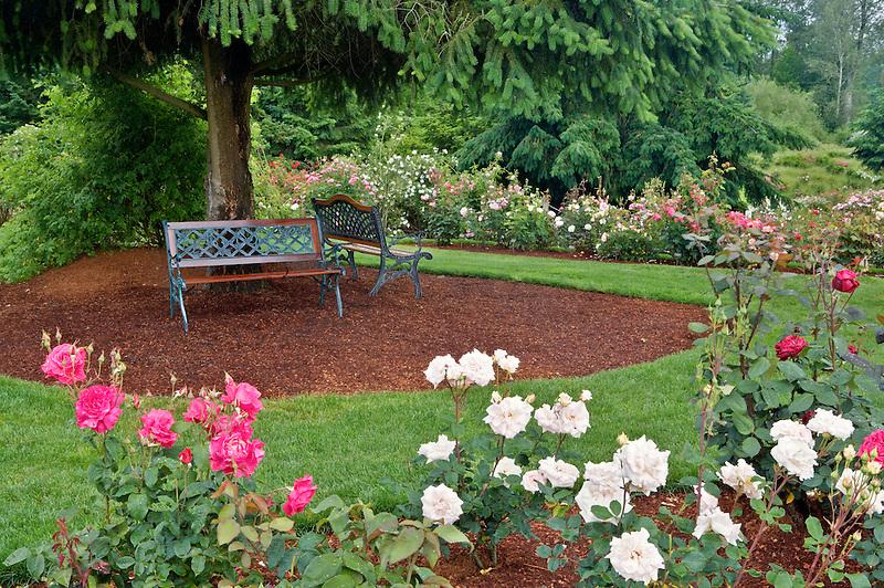 Benches in Heirloom Rose Gardens. Heirloom Gardens, Oregon