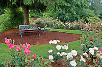 Benches in Heirloom Rose Gardens. Heirloom Gardens, Oregon