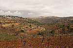 """Judea, Gush Etzion. A view of settlements  Rosh Tzurim (left) and Neve Daniel (right) as seen from the """"Path of the Patriarchs"""""""
