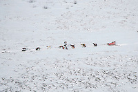 Thursday March 8, 2007   ----  Ramy Brooks stops partway between Ophir and Iditarod to snack his dogs on Thursday afternoon.
