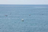 SEA_LOCATION_80249