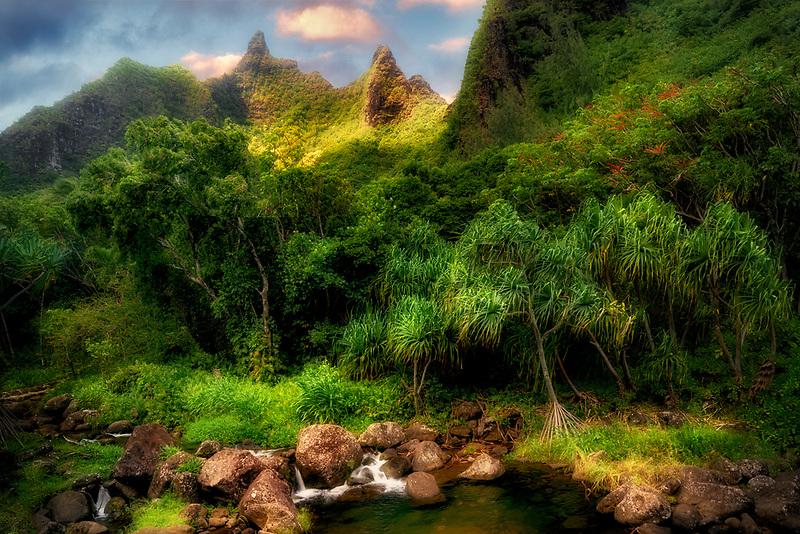 Plants in Limahuli Gardens with Makana Mountain Ridge. Kauai, Hawaii