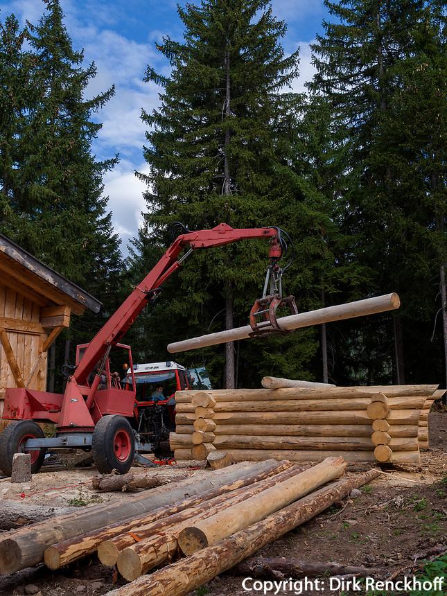Blockhausbau bei Vöran, Region Südtirol-Bozen, Italien, Europa<br /> log cabin construction near Vöran, Region South Tyrol-Bolzano, Italy, Europe