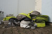 Aussortierte, verbrannte Schläuche nach dem Einsatz beim Waldbrand in Walldorf - Moerfelden-Walldorf 14.08.2020: Aufräumarbeiten bei der Feuerwehr Walldorf nach dem großen Waldbrand nahe dem Frankfurter Flughafen, emonline