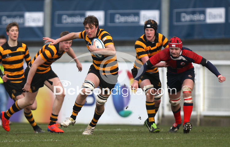 4 March 2013; RBAI number 8 Patrick Anderson on the attack during the schools cup semi-final clash between RBAI and Ballyclare High School at Ravenhill Belfast. Photo Credit : John Dickson / DICKSONDIGITAL