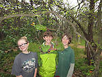 fairy house building by teenagers