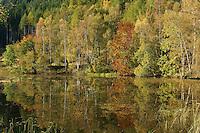 Polney Loch near Dunkeld, Perthshire