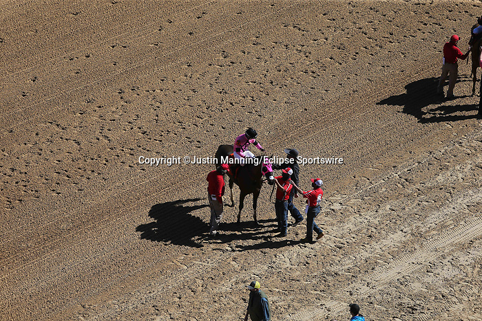 March 6, 2021: Sugar Love (7) with jockey David Cohen aboard after winning the third race at Oaklawn Racing Casino Resort in Hot Springs, Arkansas on March 6, 2021. Justin Manning/Eclipse Sportswire/CSM