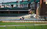 April 21, 2014  Got Lucky and rider Amy Lyn Mullen jog past some of the recent construction at Churchill Downs.  She is trained by Todd Pletcher, owned by Hill 'n' Dale Equine Holdings, Inc. and Philip J. Steinberg, and finished second in the Gazelle Stakes at Aqueduct.