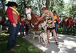 Sam Arnn lets Weslia, her service dog-in-training, check out one of the horses during the annual Pony Express Re-ride through Carson City, Nev., on Thursday, June 12, 2014. (Las Vegas Review-Journal/Cathleen Allison)